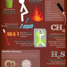Facts about your farts