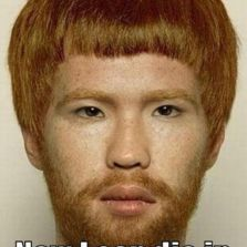 A Chinese Ginger